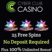 Cyber Club Casino free spins