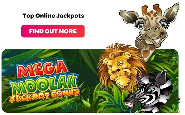 Mega Moolah, Wheel of Wishes and other jackpots from Microgaming