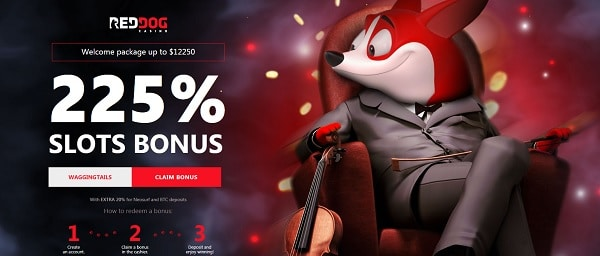 Red Dog Casino 225% welcome bonus code