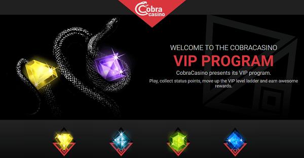 VIP Program & Loyalty Bonuses